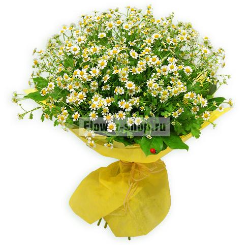 Где заказать цветы с доставкой?