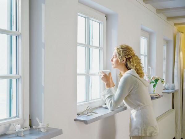 Пластиковые окна от компании Ornet