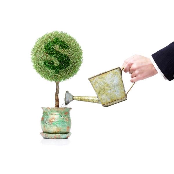 В каком банке лучше взять кредит в Украине?